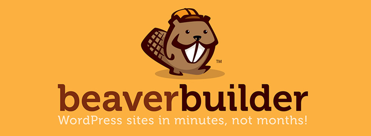 Free Up Your Time And Unleash Your Creativity With Beaver Builder
