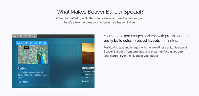 beaver-builder-why-its-different