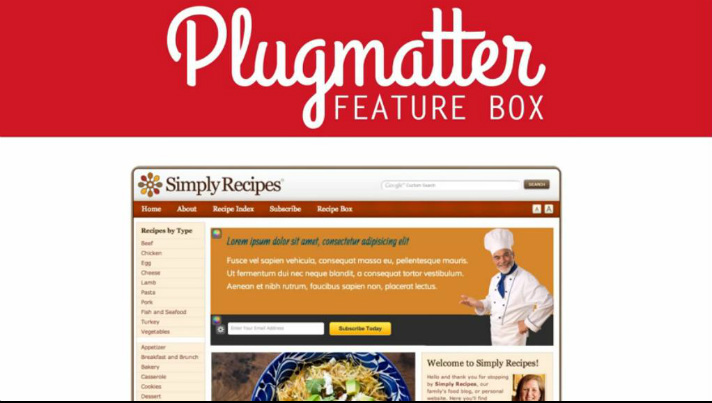 top-email-list-building-plugins-for-wordpress-plugmatter-optin-feature-box