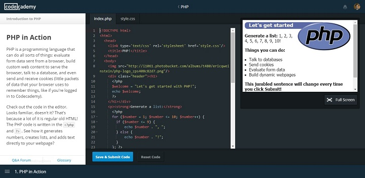 Code Academy Interface