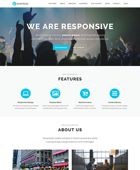 onepress wordpress theme