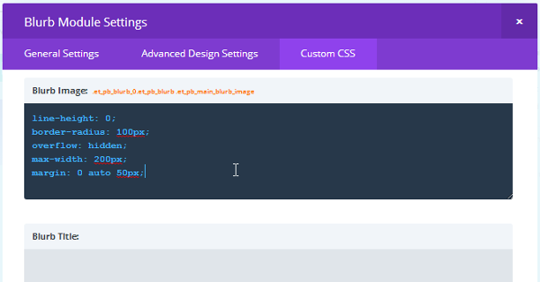 Divi Builder Custom CSS