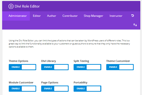 Divi Role Editor Theme Options