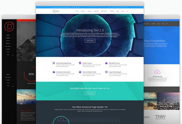 Wordpress-DiviTheme
