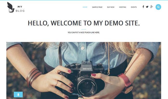 myblog-theme
