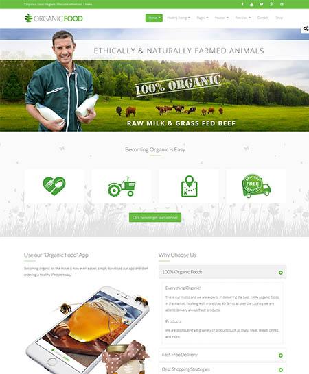 organic food theme