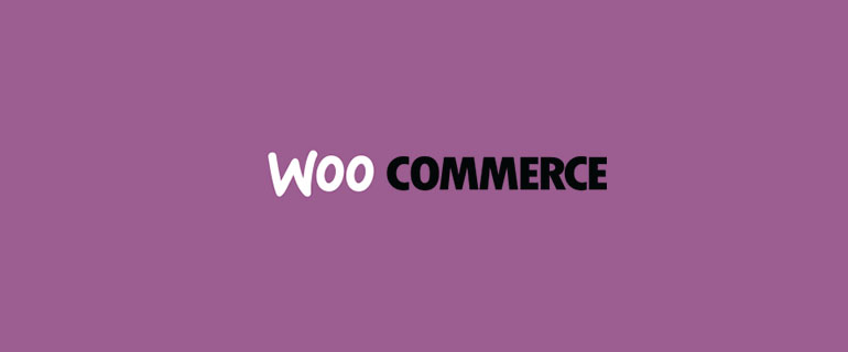 17 Beautiful Websites Running on WooCommerce