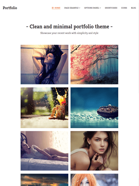 portfolio