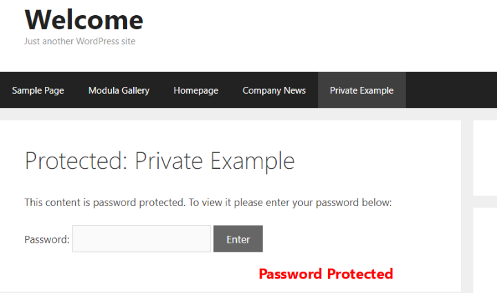 example of password protected post