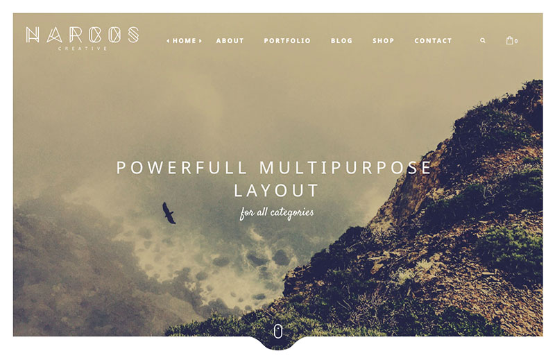 Narcos WordPress themes for writers