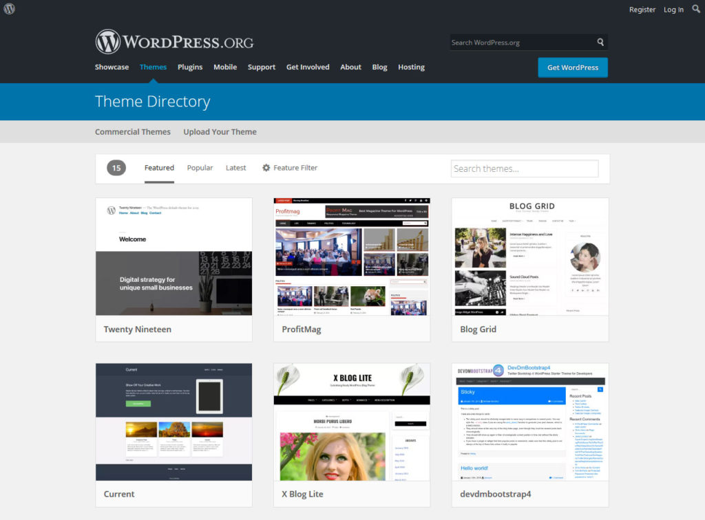 wordpress themes as example for software development