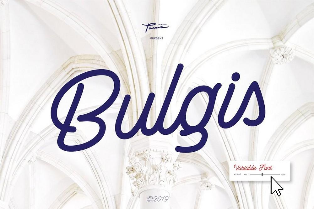 Bulgis - Stylish Script Font