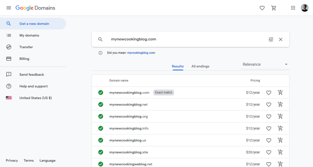 google domains search results
