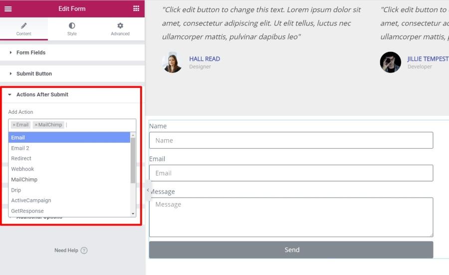Elementor review of form widget