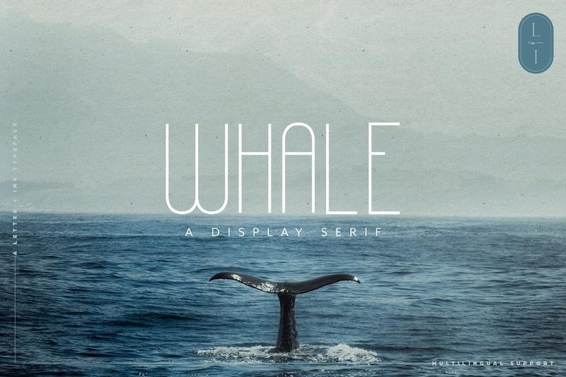 Whale font