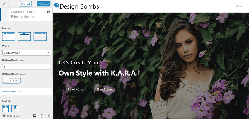 Astra With the WordPress Theme Customiser