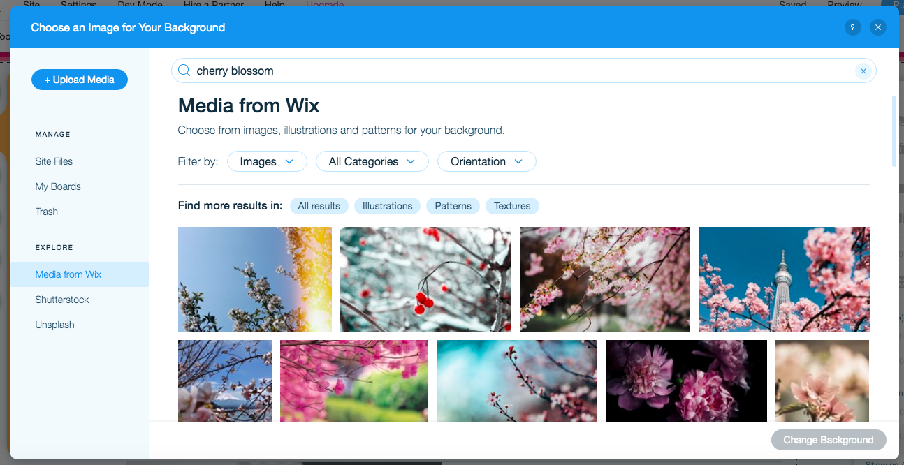 Wix background image search