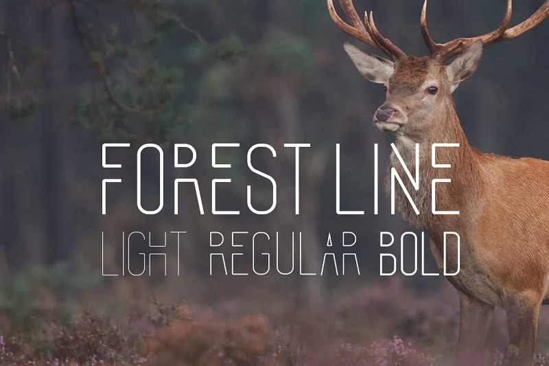 forest line narrow and condensed font